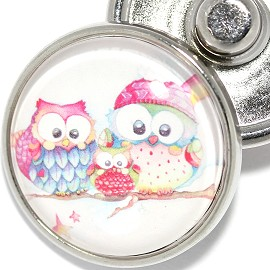 1pc Snap On Charm 2 Owl Zr1921