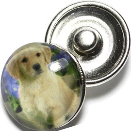 1pc 18mm Snap On Charm Round Dog White Tan ZR688